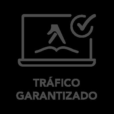 iconos productos home v2_TRÁFICO GARANTIZADO.png